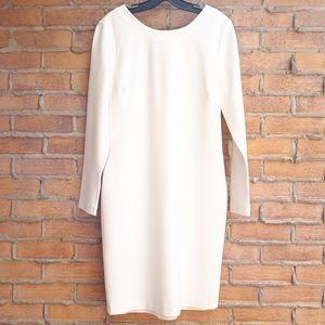 NWT BR Winter White Ponte Dress